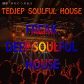 Tedjep Soulful House - Blown Up