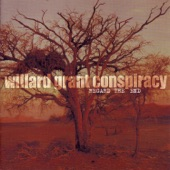 Willard Grant Conspiracy - Soft Hand