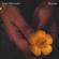 Bloom - Jake Houlsby