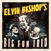 Elvin Bishop's Big Fun Trio, Elvin Bishop