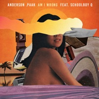Am I Wrong (feat. ScHoolboy Q) - Single Mp3 Download