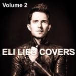 Eli Lieb Covers, Vol. 2