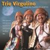 Forró de Todos os Tempos - Trio Virgulino