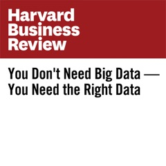 You Don't Need Big Data—You Need the Right Data (Unabridged)
