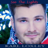 Karl Loxley - See the Lights artwork