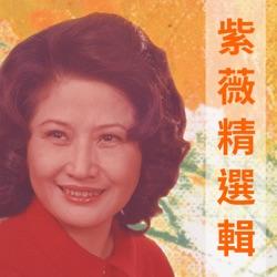 紫薇精選輯 - Ziwei Album Cover