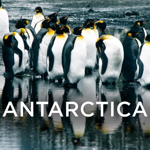 Antarctica (HD)