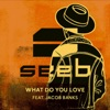 What Do You Love (feat. Jacob Banks) - Single, Seeb