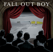 From Under The Cork Tree-Fall Out Boy