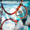Pulsedriver & DJ Fait - A Neverending Dream (Sal De Sol Mix) grafismos