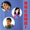 鄉城台語精選, Vol. 1 - 群星