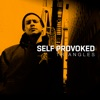 Self Provoked - Jiggy Jiggy