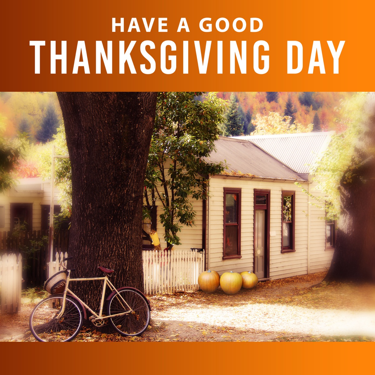 Have a Good Thanksgiving Day: Chill in the Morning Jazz