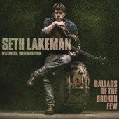 Seth Lakeman - Meet Me In The Twilight