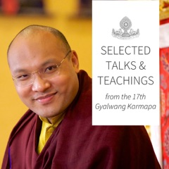 Karmapa - Selected Talks on Buddhism, Philosophy, and Meditation.
