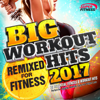 Big Workout Hits 2017 - Remixed for Fitness - Perfect for Gym - Various Artists