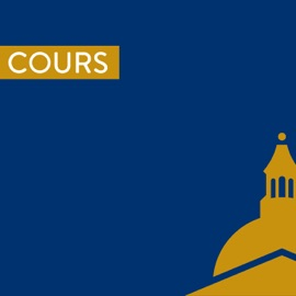 Droit Constitutionnel Et Institutions Politiques Cavej Michel Verpaux 2010