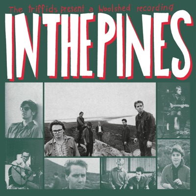 In the Pines - The Triffids
