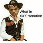 What in XXXTarnation (feat. Ski Mask the Slump God) - Single