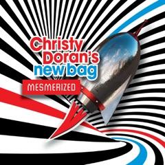 Mesmerized (feat. Christy Doran, Vincent Membrez, Lionel Firedli & Sarah Buechi)