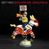 Gov't Mule - Traveling Tune
