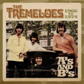 The Tremeloes - Here Comes My Baby