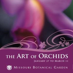 Missouri Botanical Garden Orchid Show 2007
