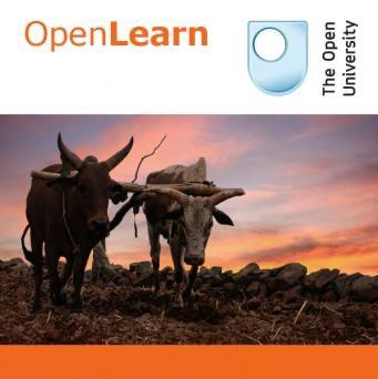 Introducing international development management - for iBooks
