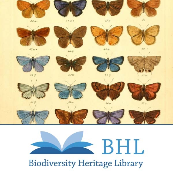 Pillars of Biodiversity
