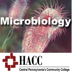 BIOL 221: Microbiology - dw