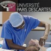 Bases anatomiques de la chirurgie plastique