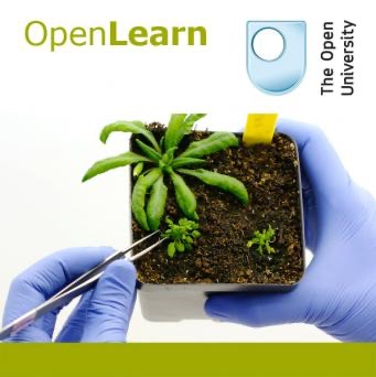 Gene manipulation in plants - for iBooks