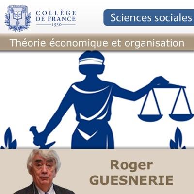 Théorie économique et organisation sociale