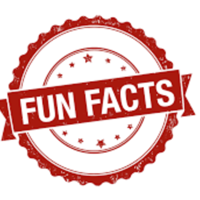 Fun Fact Friday podcast