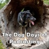 Dog Days of Podcasting Challenge artwork