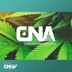 The CannabisNewsAudio Podcast