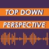 Top Down Perspective artwork