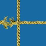 מותר להשוות - על המודל החברתי כלכלי של שוודיה / דיוויד סטברו