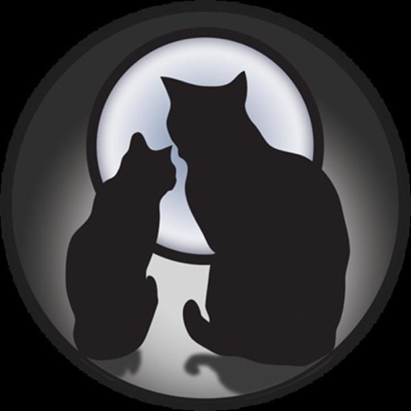 La noche de los gatos