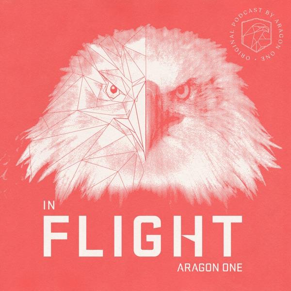 In Flight by Aragon One