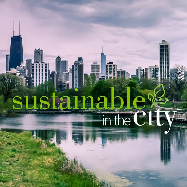 Sustainable In the City