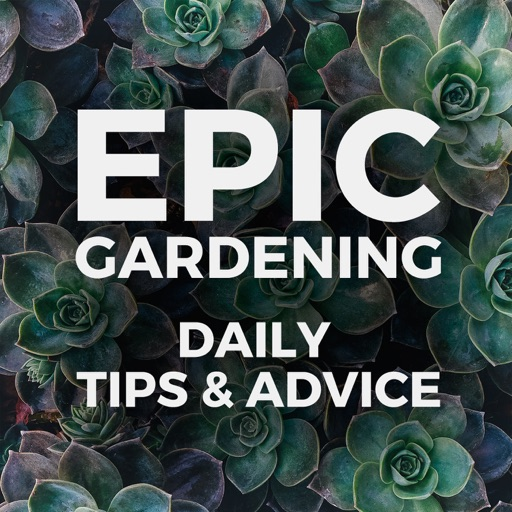 Cover image of Epic Gardening: Daily Growing Tips and Advice