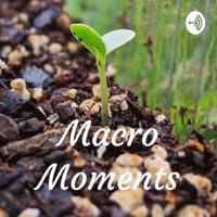 Macro Moments podcast