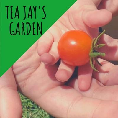 Tea Jay's Garden