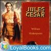 Julius Caesar by William Shakespeare artwork