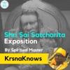 Shri Sai SatCharita - The Life and Teachings of Shirdi Sai Baba artwork