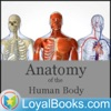 Anatomy of the Human Body by Henry Gray artwork
