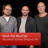 Wesseltoft Schwarz Berglund Trio: Meet the Musician podcast