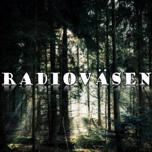 Radioväsen