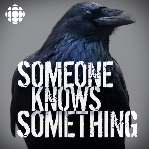 Cover image of Someone Knows Something